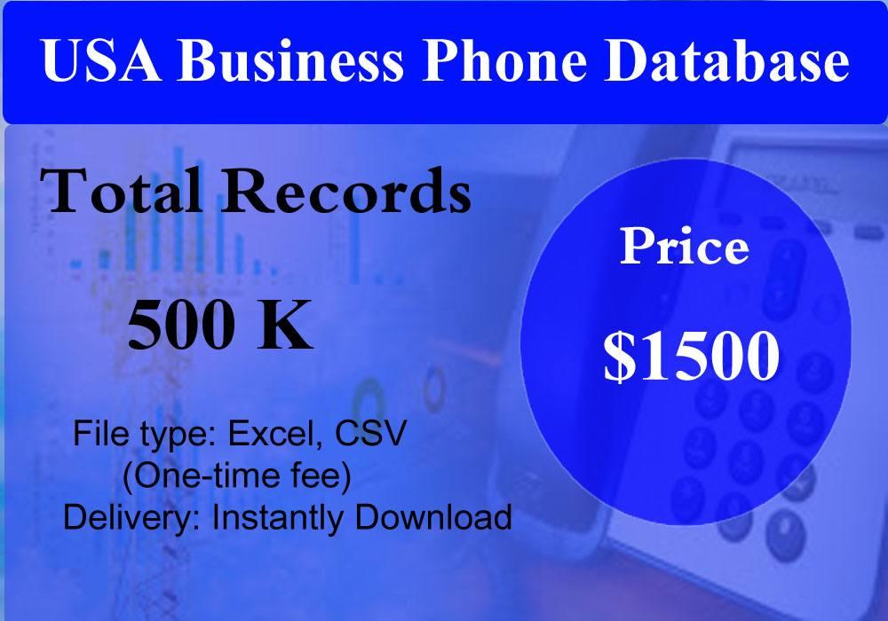 USA Business Phone Database