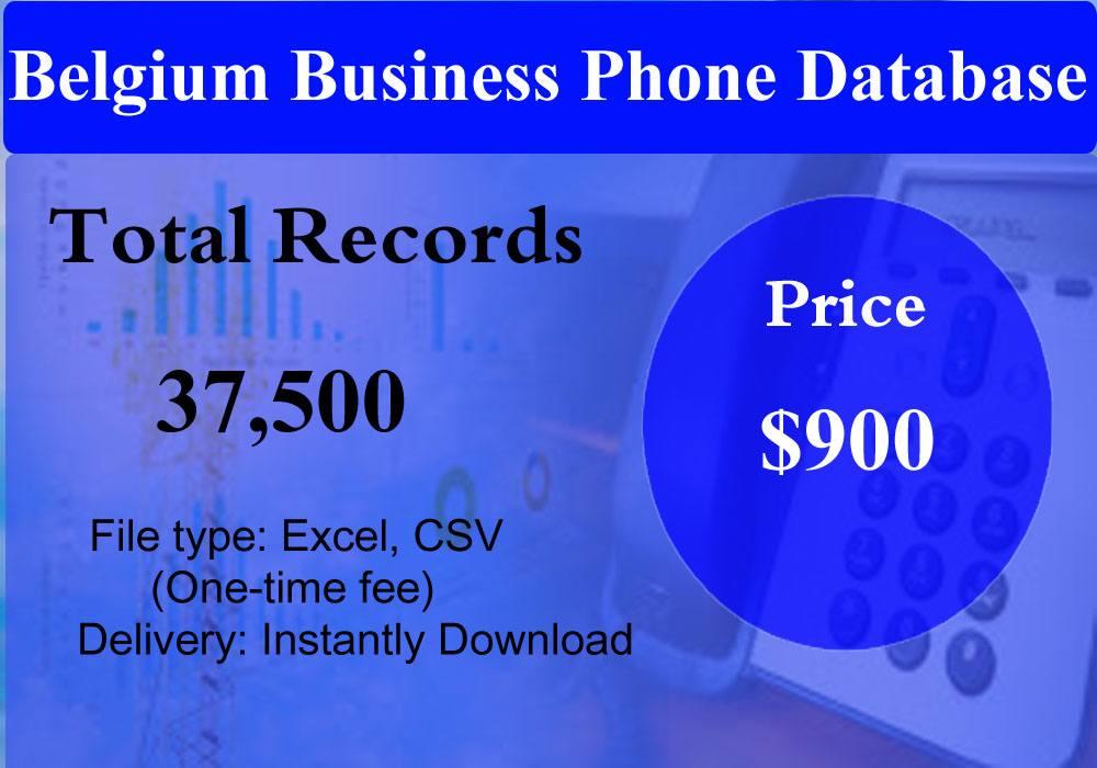 Belgium Business Phone Database