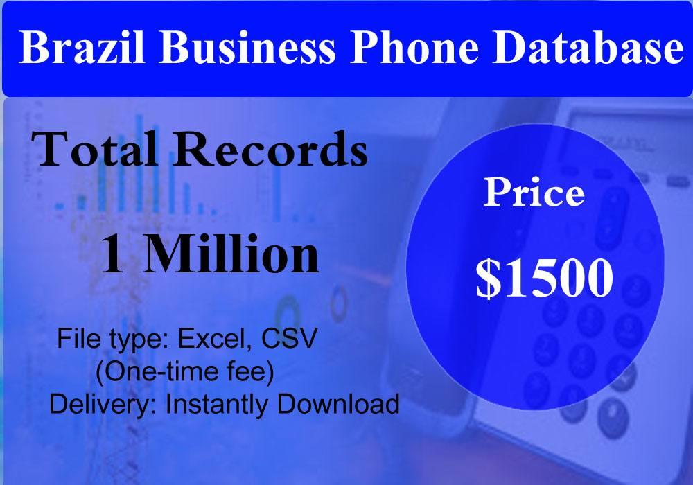 Brazil Business Phone Database