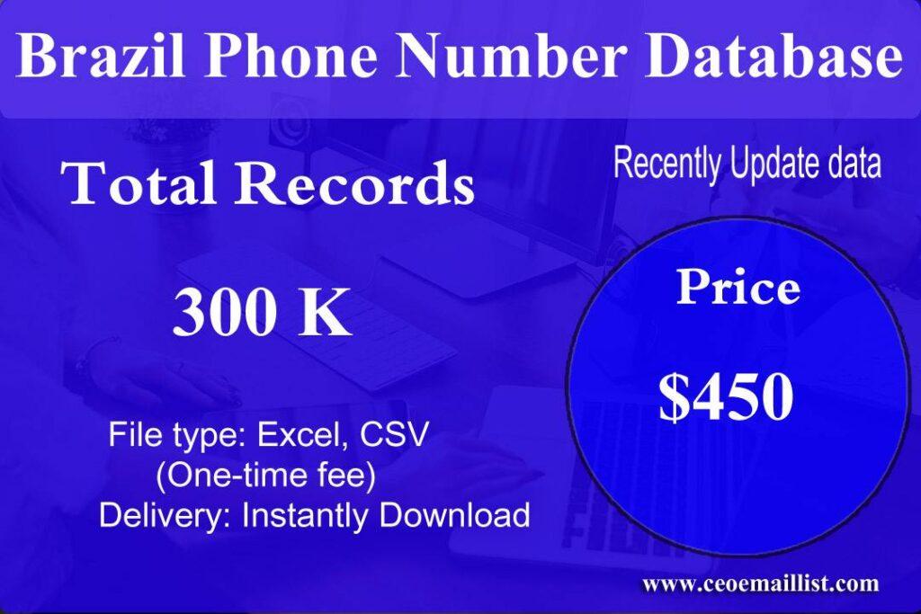 Brazil Phone Number Database