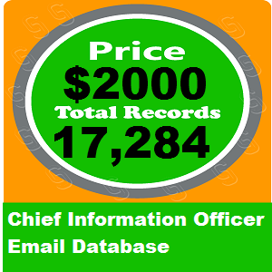 Chief Information Officer Email Database