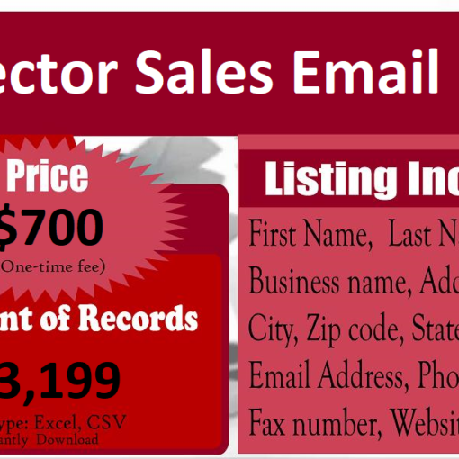 Director-Sales-Email-List