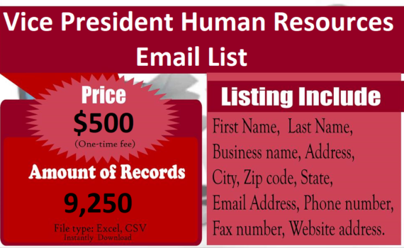 Vice-President-Human-Resources-Email-List